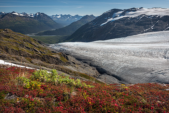 Fall colors in the foreground of Exit Glacier