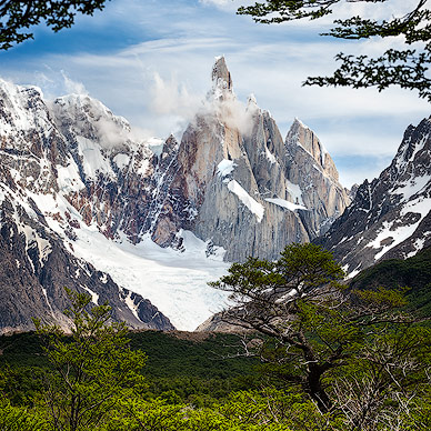 Cerro Torre framed by leaves